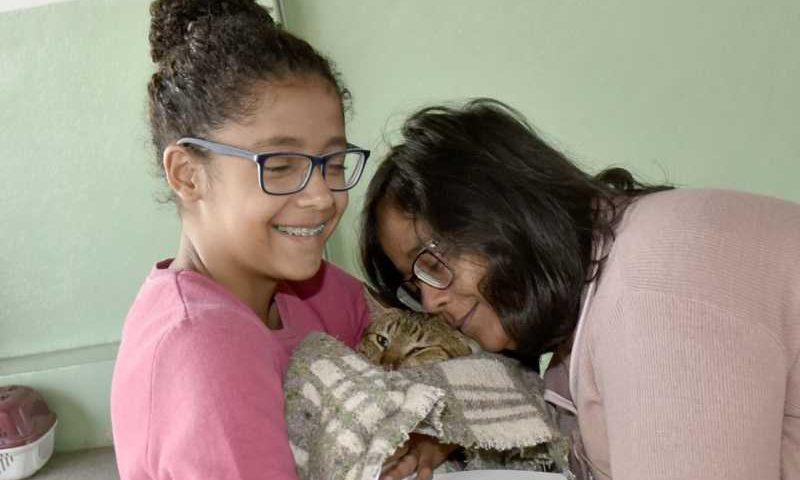 Juninho, o gato de Márcia Martins Demona, foi castrado durante mutirão, no sábado (20), no Ivoturucaia Foto: Gato no colo de criança, após sair