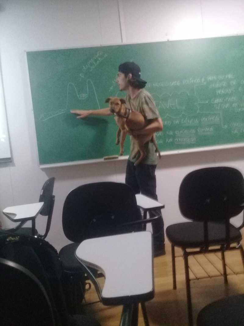 Professor é flagrado carregando cachorro enquanto dá aula em cursinho em São Vicente, SP — Foto: Arquivo Pessoal/Amanda Pessoa