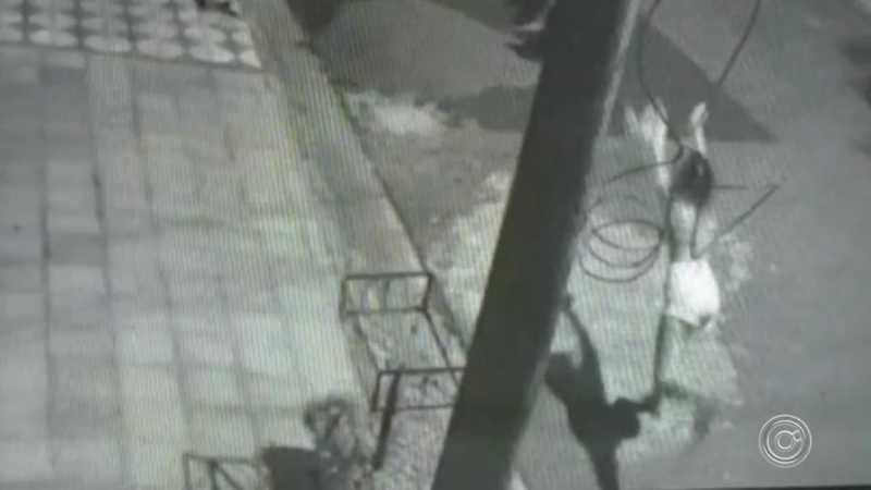 Jovem joga gato em direção à cachorro rotweiller em Sorocaba — Foto: Reprodução
