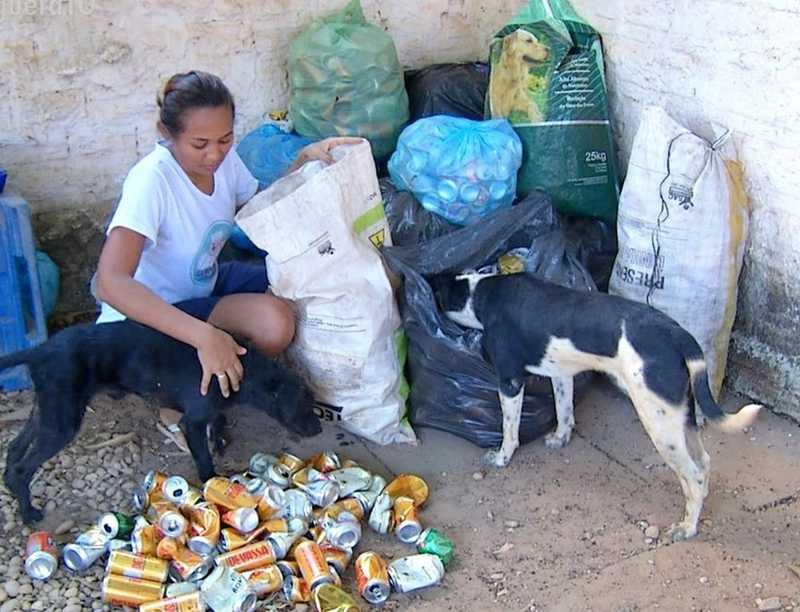 Animais de rua são resgatados por amigas — Foto: Reprodução/TV Anhanguera