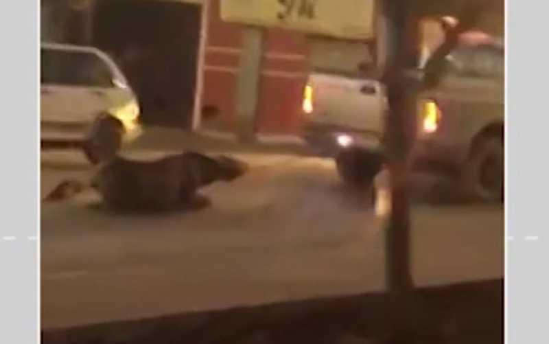 Um inquérito policial foi aberto para investigar o caso. Caso ocorreu em Barreiras. — Foto: Reprodução / Arquivo Pessoal