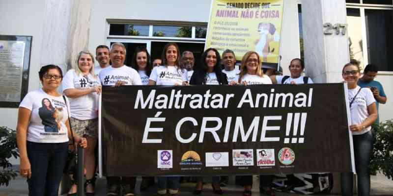 Pressão popular faz prefeito de Juazeiro do Norte (CE) voltar a atrás e retirar veto contra a causa animal