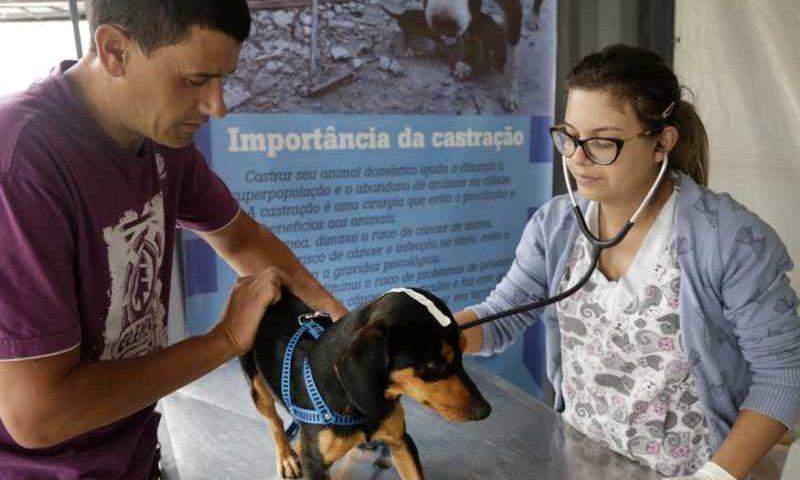 Ação acontece entre os dias 2 e 13 de setembro, no Parque dos Peladeiros. Foto: Divulgação/SMCS/Luiz Costa