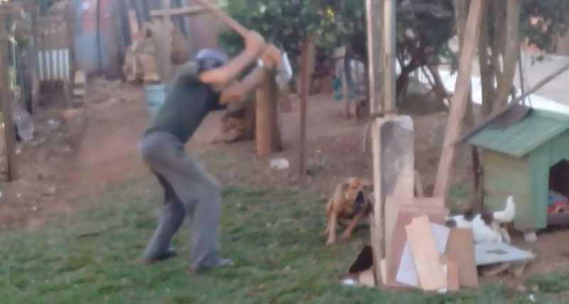 Agressão foi registrada em um vídeo na manhã desta segunda-feira (12) — Foto: Guarda Municipal/Divulgação