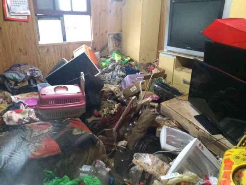 Semma resgata nove gatos e dois cães em casa de acumuladora em Caxias do Sul, RS