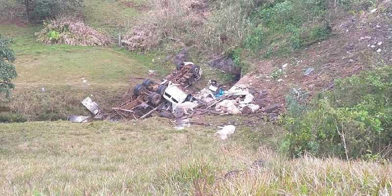 Oito bois que seriam levados para Expointer morrem após caminhão capotar na 'curva da morte'
