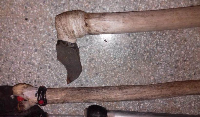 Polícia investiga 'rituais macabros' com animais no Parque Ecológico de São Carlos, SP