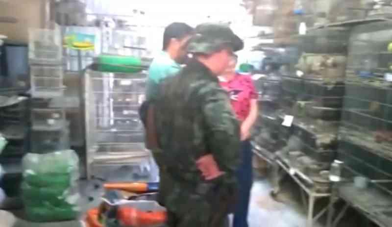 Polícia encontra animais mortos e debilitados em casa de rações, em Rio Preto, SP