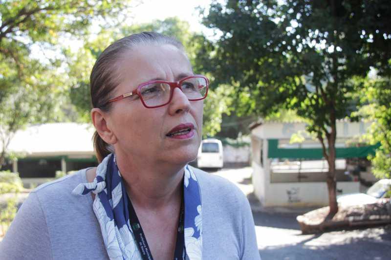 Veterinária Valéria Camprigher procura cachorra para alimentar cria de Mãezinha / Foto: Vinicius Bomfim
