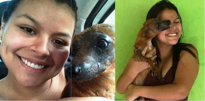 Cachorro chora ao ser adotado por nova tutora após ter corpo queimado no Acre