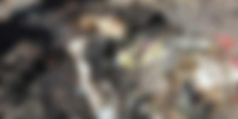 Amoantoado de cães e gatos queimados choca bairro em Comodoro Rivadavia, Argentina