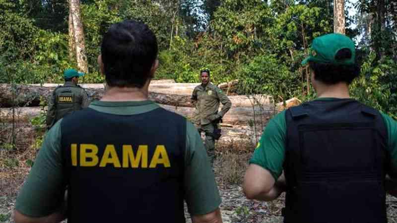 Segundo ambientalistas, emendas tiram responsabilidade do Ibama em autorizar caça e a deixam apenas com o Exército.