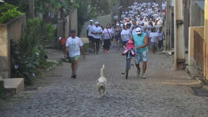 Algodão vivia pelas ruas da cidade e era querido pelos moradores — Foto: Reprodução/ TV Gazeta