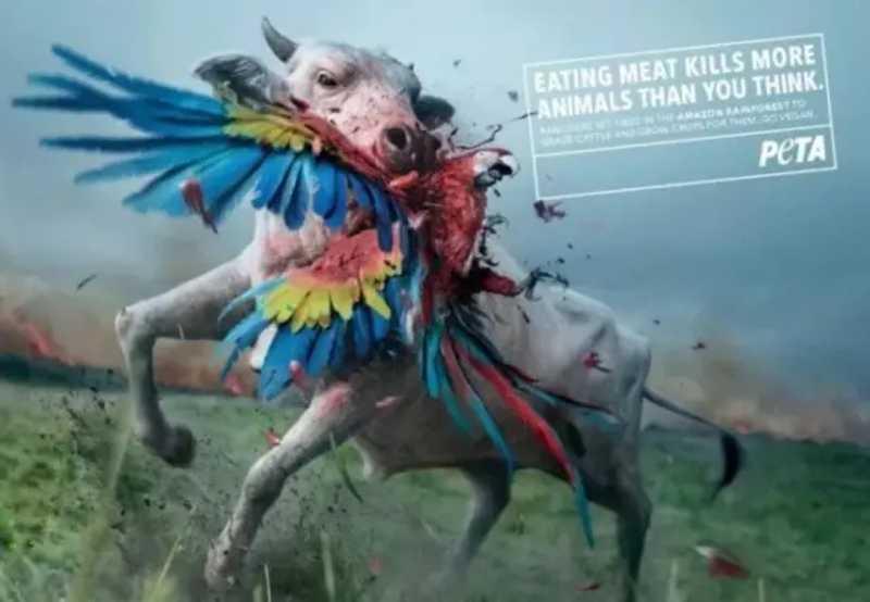 ONG PETA, em defesa dos direitos dos animais, lança campanha acusando produção de carne de causar incêndios na Amazônia. Foto: Divulgação/PETA