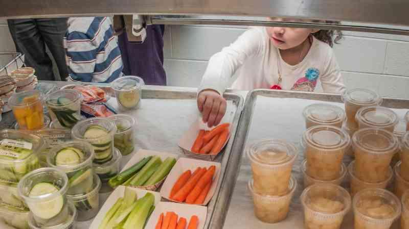 Conselho de cidade na Islândia estuda cortar carne das cafeterias escolares