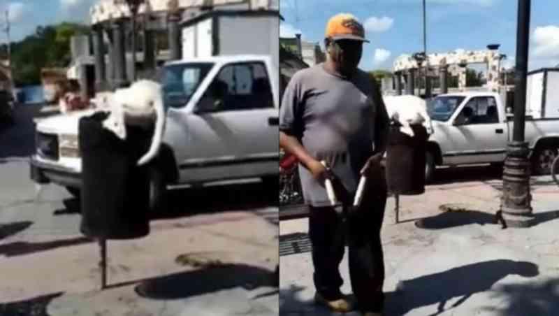 Homem amputa cauda de cão que procurava comida no lixo no México; vídeo
