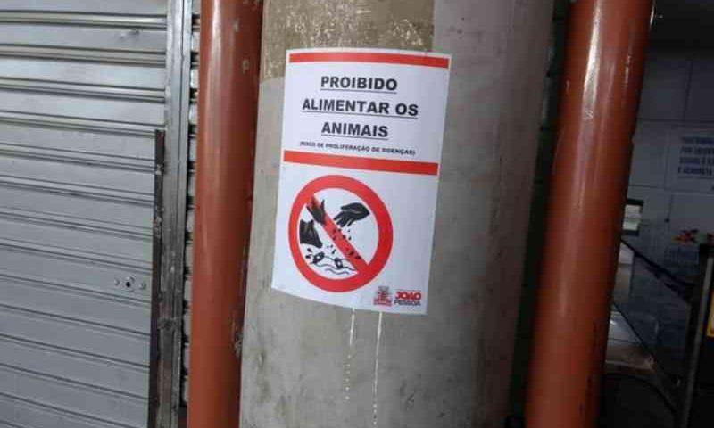 Cartazes irregulares que 'proíbem' alimentar animais são fixados em mercado de João Pessoa, PB