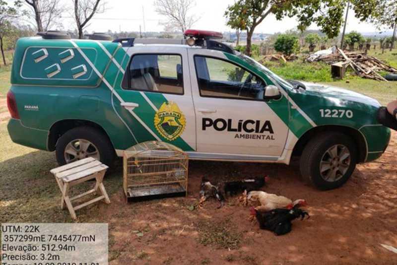 Foto: Divulgação / Polícia Ambiental
