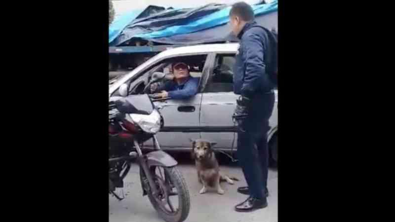 Homem em veículo arrasta um cachorro no Peru