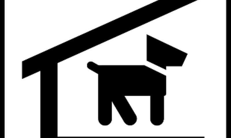 Casinhas de Cachorro: proibida retirada no bairro Jardim do Salso, em Porto Alegre