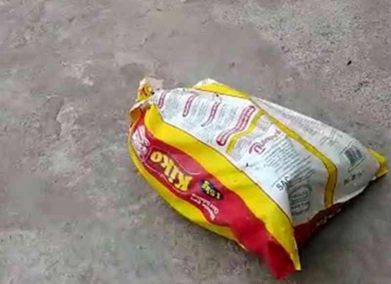 Cães são abandonados em saco plástico na porta de abrigo em Goiânia, GO