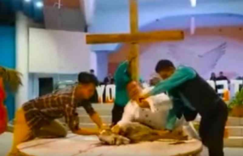 Pastor sacrifica cabra em pleno culto para relembrar morte de Cristo na cruz