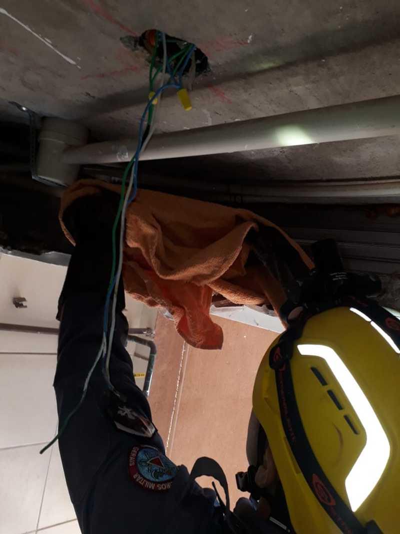 Militares do Corpo de Bombeiros resgataram, nesta quarta-feira (02), duas corujas dentro de um apartamento em Nova Lima, na Região Metropolitana de Belo Horizonte. — Foto: Reprodução/Corpo de Bombeiros