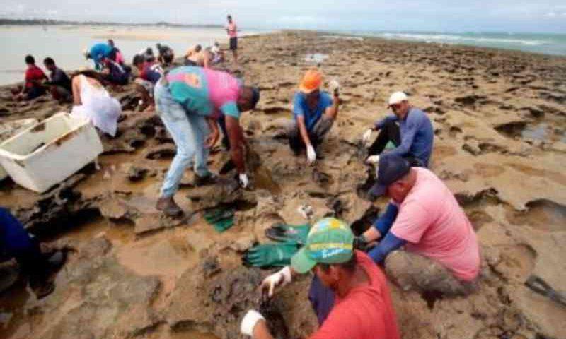 Corais atingidos por petróleo devem levar milhares de anos para se recompor, diz especialista