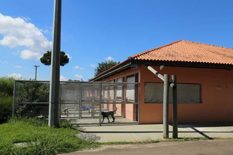 Centro de Referência para Animais em Risco (Crar) fica na Cidade Industrial de Curitiba (CIC) e pode ser visitado todos os dias da semana — Foto: Giuliano Gomes/PRPress