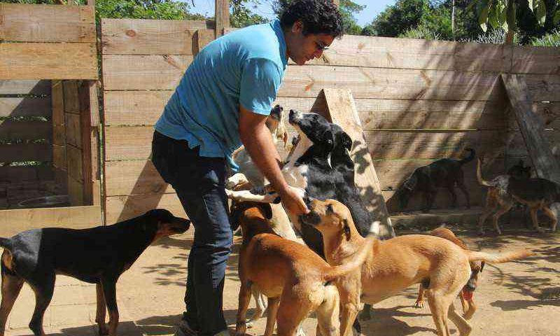 Abrigo cuida de animais e cria oportunidades para pessoas em situação de rua