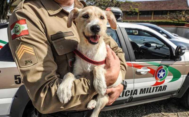 Mike, o mascote da PM em Penha (Foto: Divulgação)