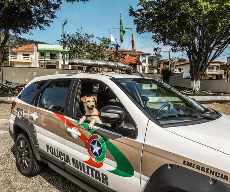 Mike na viatura da PM (Foto: Divulgação)