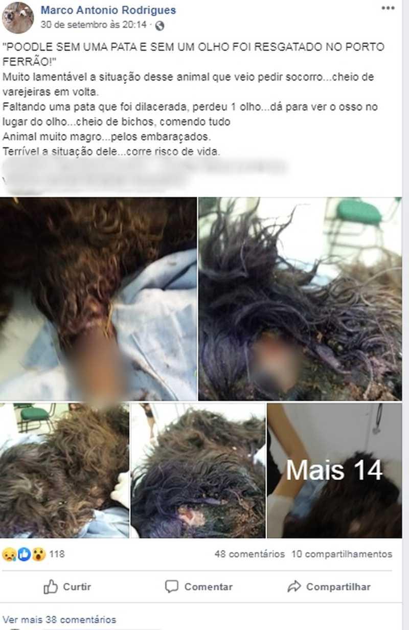 Marco Antônio fez uma postagem nas redes sociais após resgate de cão — Foto: Reprodução/Facebook