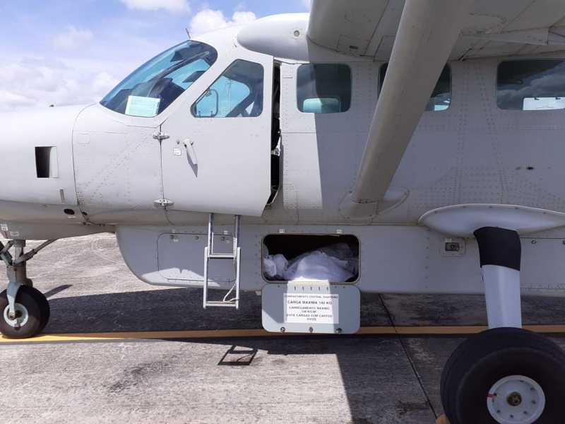 Aeronave de pequeno porte faz translado de animais mortos em Alagoas para Brasília — Foto: Instituto Biota