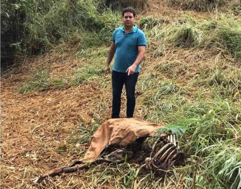 Animais mortos são encontrados em terreno alugado pela Prefeitura de Cruz das Almas, BA