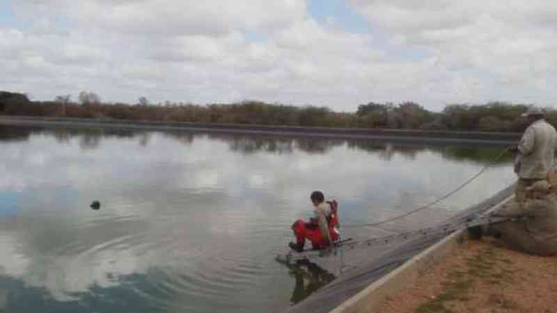 Cachorro é resgatado após 48 horas preso em estação de tratamento de água, em Limoeiro do Norte, CE