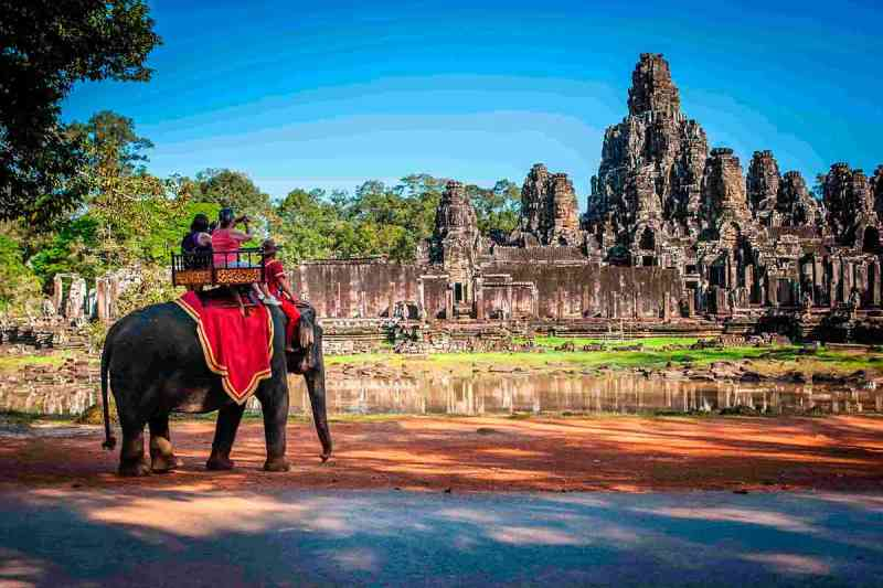 Vitória! Camboja proíbe os cruéis passeios sobre as costas de elefantes no templo de Angkor Wat