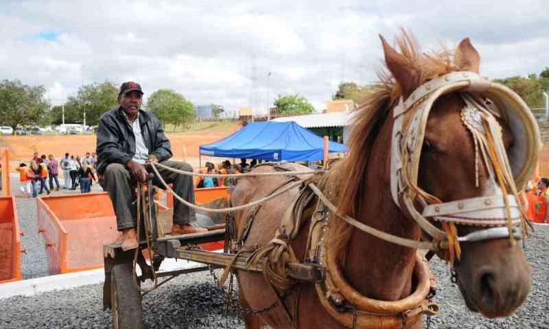 Governo do Distrito Federal quer qualificar carroceiros e tirar veículos de tração animal das ruas