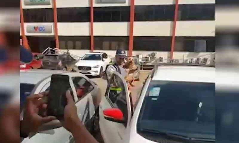PM resgata cachorro preso em carro em estacionamento na Asa Sul, Brasília, DF