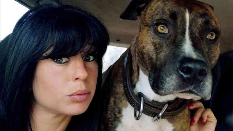 Grávida é morta por cães durante caçada em floresta na França