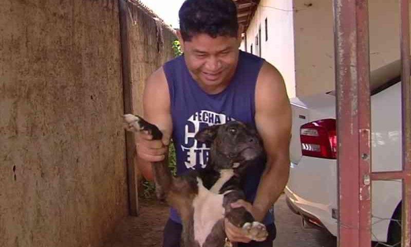 Homem adota cão que ficou um mês na porta de posto de saúde esperando pelo tutor que morreu no local