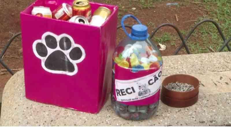 Projeto arrecada recicláveis para custear castrações de animais em Alfenas, MG