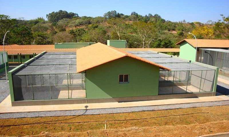 Centro de Triagem e Reabilitação de Animais Silvestres de Patos de Minas — Foto: IEF/Divulgação