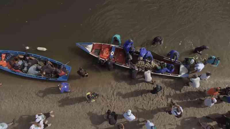 Documentário sobre peixe-boi que sobreviveu a encalhe após luta de 4 anos na PB é lançado; assista