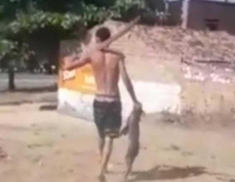 Homem é preso após maltratar cachorro na zona rural de Caruaru, PE