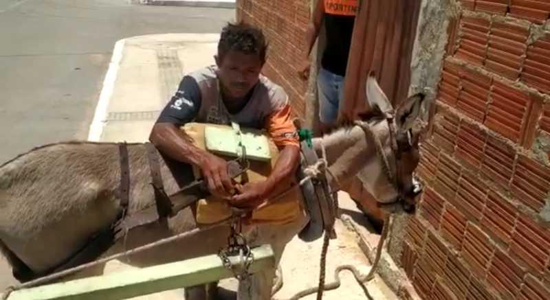 Carroceiro maltrata animal no Bairro Corrente e revolta moradores em Petrolina, PE