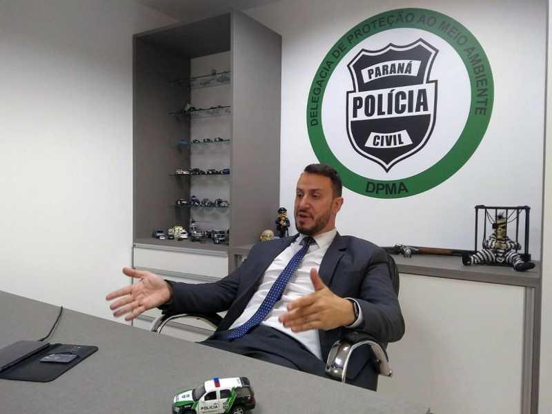 Delegado da DPMA. Foto: Gerson Klaina / Tribuna do Paraná