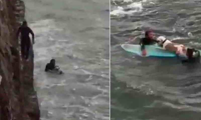 Esses surfistas arriscaram suas vidas para salvar um cachorro que caiu de penhasco e foi arrastado pelas ondas