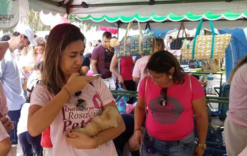 1ª edição do Outubro Rosa Pet foi realizada neste ano em Petrópolis — Foto: Divulgação/Prefeitura de Petrópolis