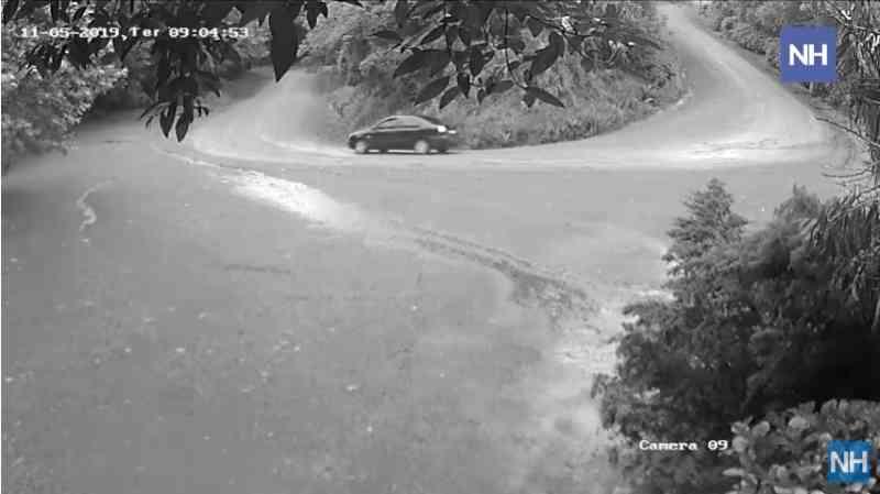 Vídeo flagra momento em que cão é abandonado por motorista em Morro Reuter, RS